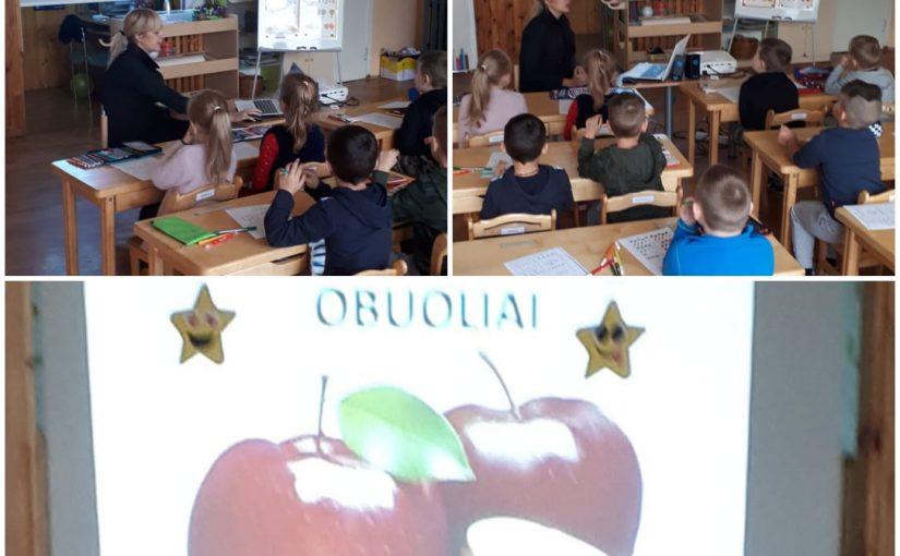 Pamoka apie vaisius, daržoves ir uogas
